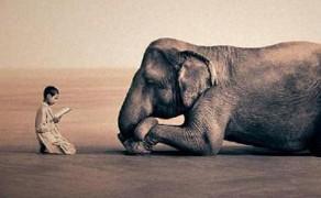 A tranquilidade é de cada um de nós
